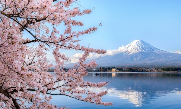 Solo Travel - Japan | Art In Voyage
