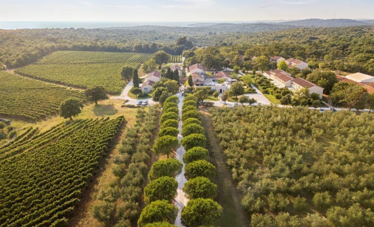Meneghetti Wine Hotel & Winery, Highlights & Delights of Croatia, May 2021