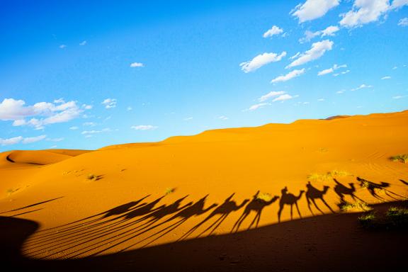 Private Desert Camp Sakina