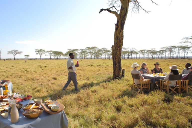 Selected property in Central Serengeti on the 'Capturing the Great Migration' journey, with Art In Voyage