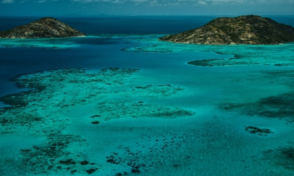 Romantic Lizard Island