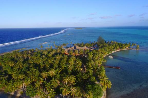 Tahiti: Journey of Renewal