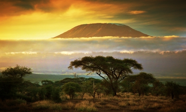 Romantic Ol Kinyei Kenya