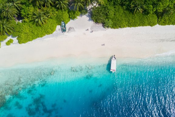 Cruises of Distinction: The Maldives, with Art In Voyage - November 2021