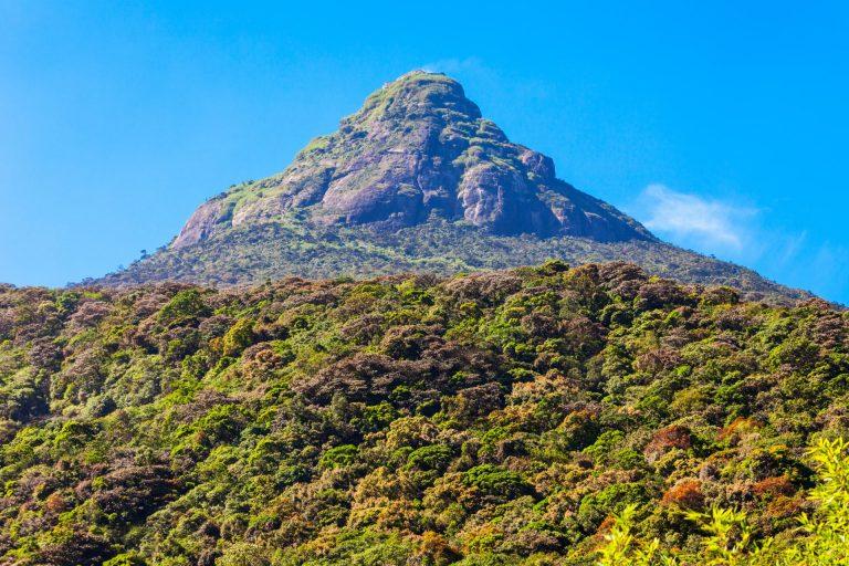 Hiking Sri Lanka, By Art In Voyage
