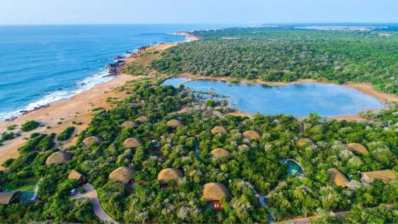 Tropical Beaches & Leopards