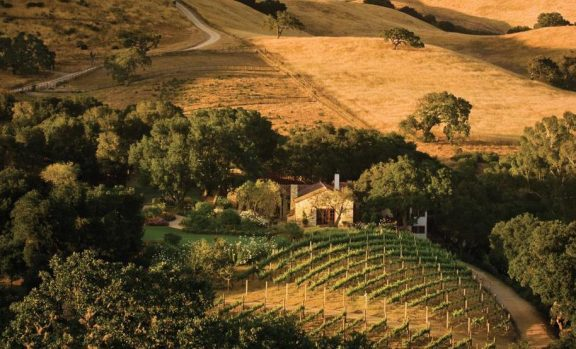 Carmel valley - wine experience