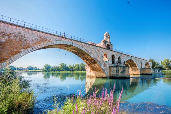 Avignon Bridge with Popes Palace, Pont Saint-Benezet, Provence