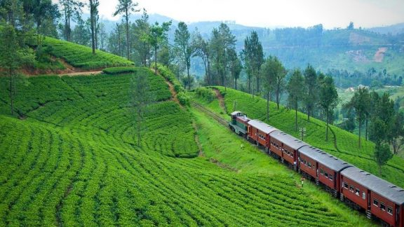 Kandy to Hatton by train