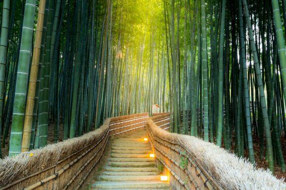 Day trip to Arashiyama