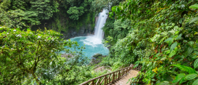 Costa Rica: 7 Night Journey of Renewal, with Art In Voyage