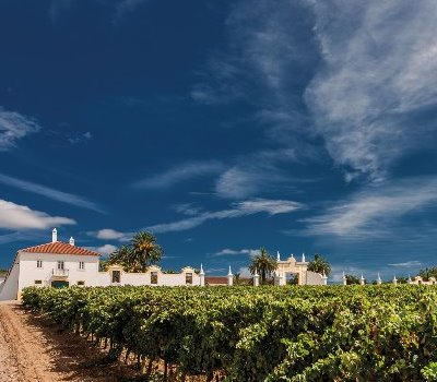 Alentejo Farm & Wine day