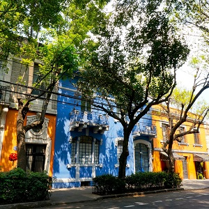 Mexico City, with Art In Voyage