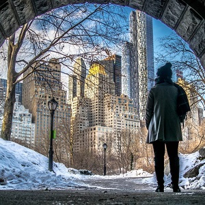 Winter Flavors of New York, by Art In Voyage