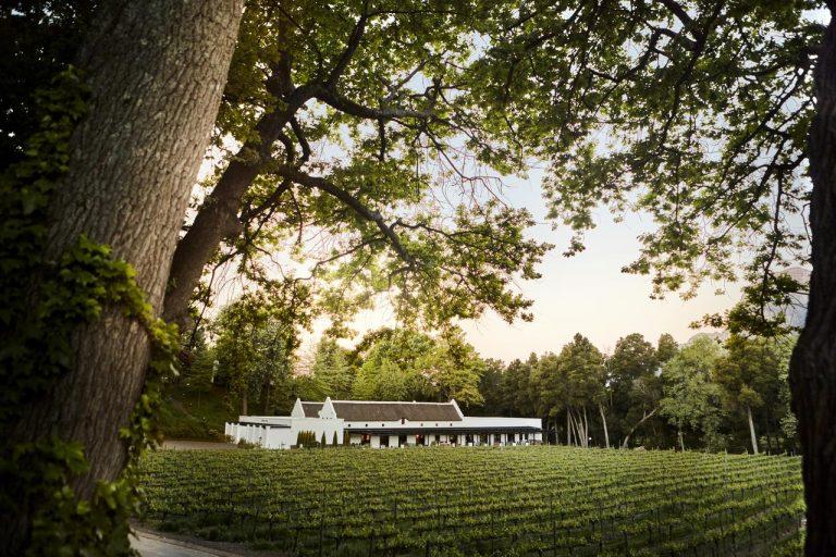 Molenvliet Wine Farm