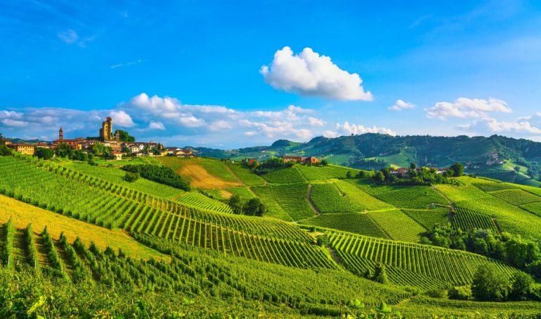 Taste Of Piedmont