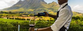 Tim Varan Talks Wine in Africa, with Art In Voyage