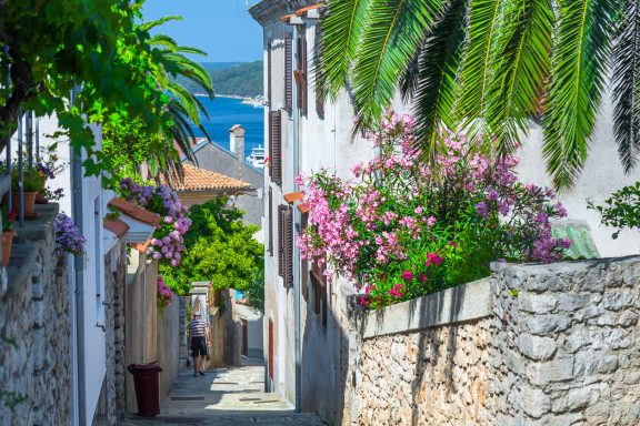 Traditional European Mediterranean architectural style in the streets and houses, yard, porches, stairs, shutters in the afternoon sunbeam, surrounded by vine, hydrangea and palm at summertime. Mali Losinj.