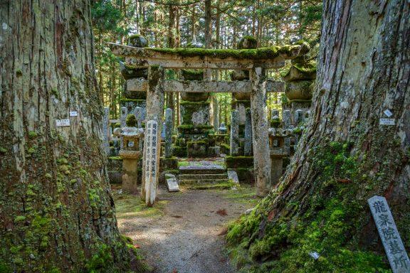 Zen experience in Koya San