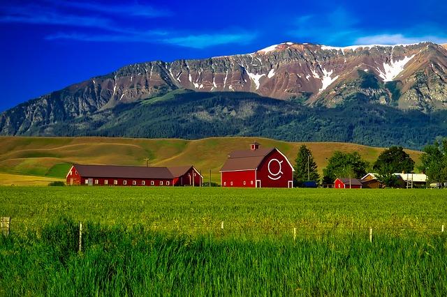 Oregon, by Art In Voyage