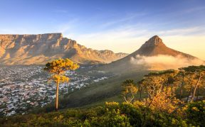 South Africa At A Glance<br>(local) Spring Edition