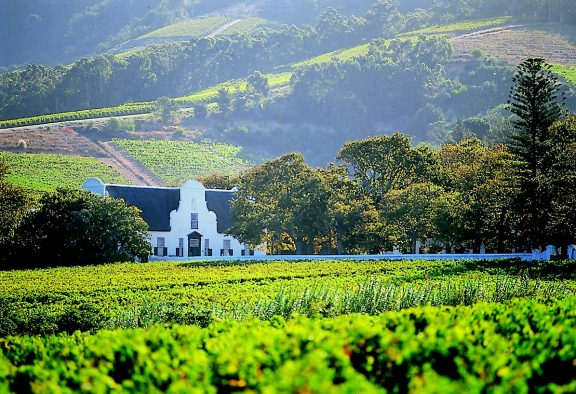 The markets and the winelands